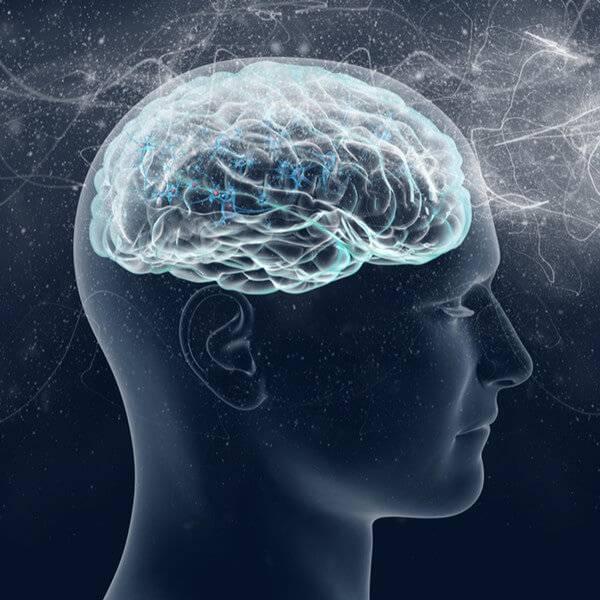 人类的智商可以后天培养吗